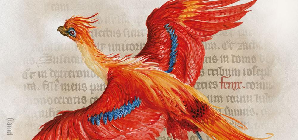 Magic comes alive…..Harry Potter A History of Magic